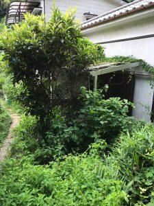 横須賀作業4